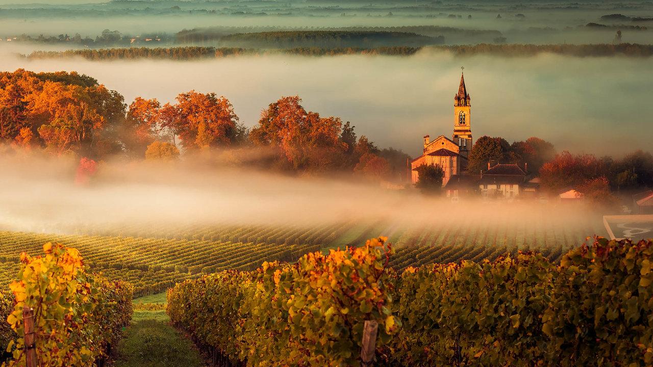Změny globálního klimatu stále častěji dopadají inavinaře veFrancii. Na snímku vinice v Bordeaux.