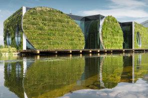 Sídlo stavební firmy LIKO-S je zodpovědné k přírodě. Odpadní voda přečištěná kořeny mokřadních rostlin na střeše se používá třeba pro splachování toalet.