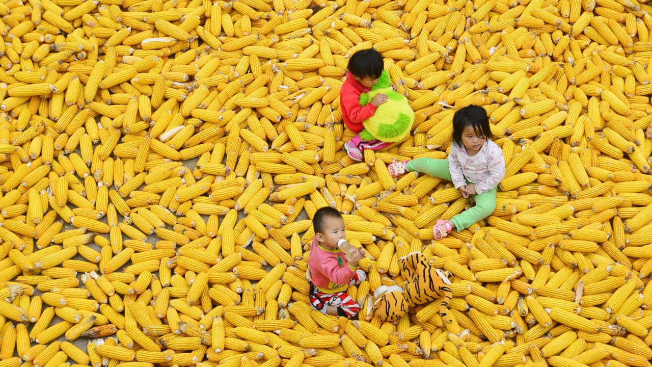 Čína zůstává nejlidnatější zemí světa, ale vinou dřívější politiky jednoho dítěte rychle stárne.