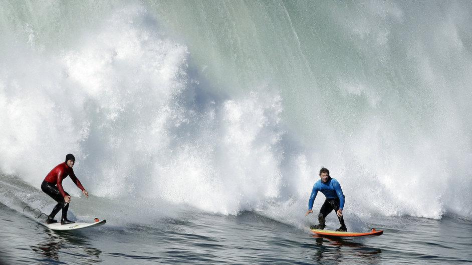Letos zaútočili žraloci na australské surfaře již třináctkrát.