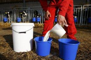 Producenti mléka loni a předloni čelili krizi kvůli nízkým výkupním cenám - Ilustrační foto.