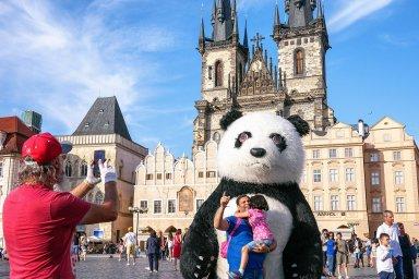 Užší vztahy s Čínou měly podle NYT přinést Česku investice. Většina se však neuskutečnila, napsal list a připomněl, že ani slibovaná panda se novou atrakcí pražské zoo nestala.