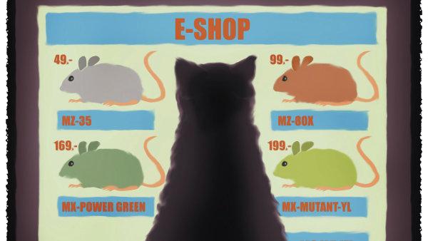 Nákup v e-shopu