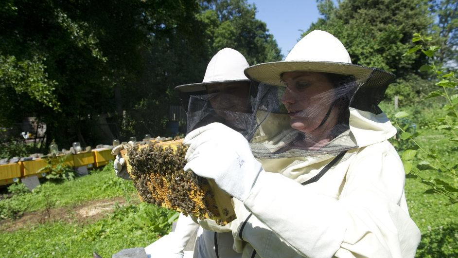 V Dubičné na Úštěcku zkouší dvě mladé farmářky rozjet včelí farmu.