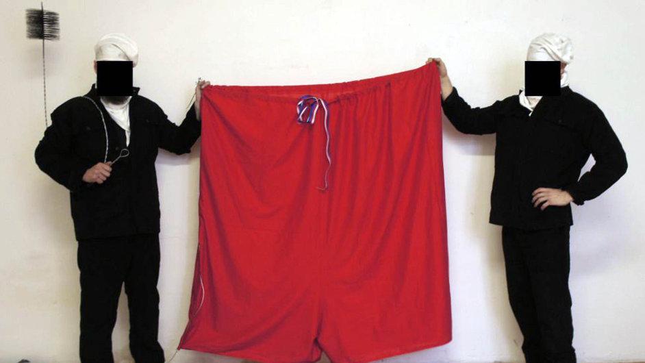 Umělecká skupina Ztohoven vyvěsila na Hradě místo standarty rudé trenky.