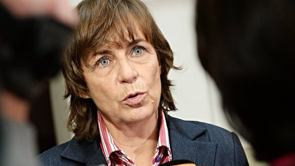 Poslankyně Jitka Chalánková (TOP 09) oznámila, že další české matce bylo odebráno dítě.