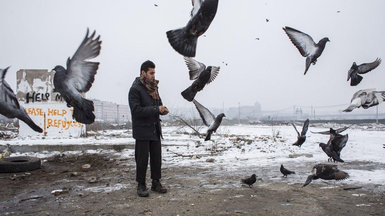 Problémy dnešní doby, série fotografií: Milan Jaroš, Respekt / Zima, nuda a hlad v Bělehradu.