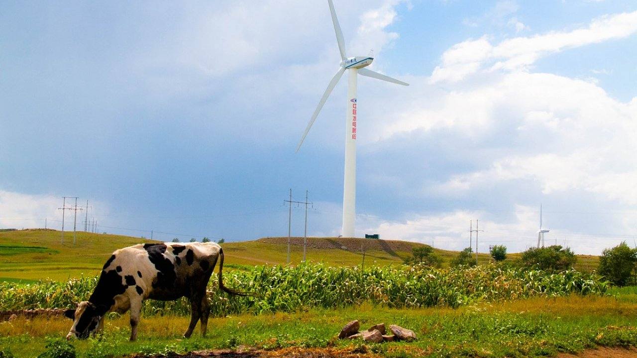 Čína jako vysoce konkurenceschopná průmyslová země přispívá životnímu prostředí snižováním emisí.
