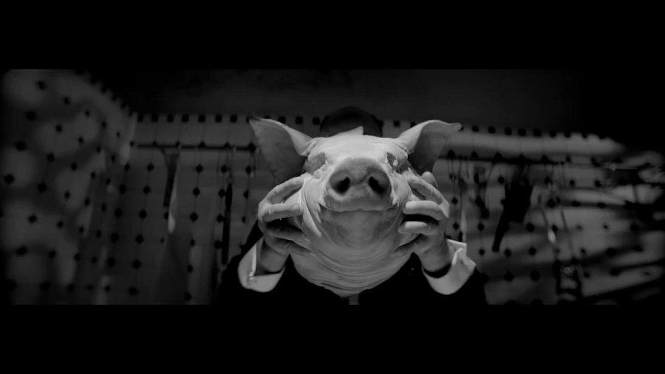 Pigfonie_7.mp4.jpg