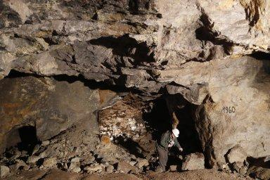 Lithium v Krušných horách: Otto Janout, jeden ze zakladatelů Geometu, provádí průzkum poblíž Cínovce.