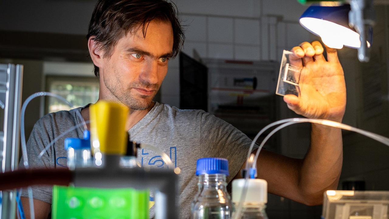 Experimentální botanik Matyáš Fendrych šest let sbíral zkušenosti ve špičkových institutech v Belgii a v Rakousku. Na Přírodovědecké fakultě UK zkoumá buněčné procesy při růstu kořenů rostlin.