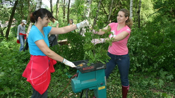 Manažeři pomáhají v lese