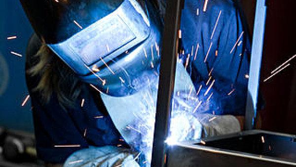 V�t�zn� firma Hestego se zab�v� zejm�na �pravami plechu.
