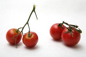 Nejezte cherry rajčata z Maroka, varuje inspekce. Zelenina způsobila zvracení a křeče