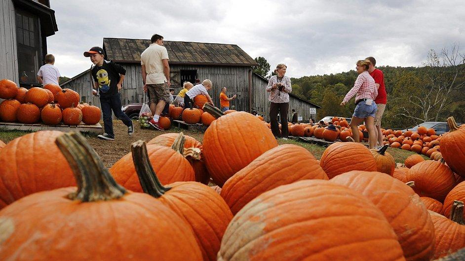Přípravy na Halloween, ilustrační foto
