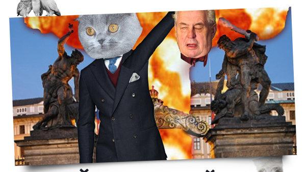 Na snímku je detail z přebalu knihy Kočky jsou vrženy.