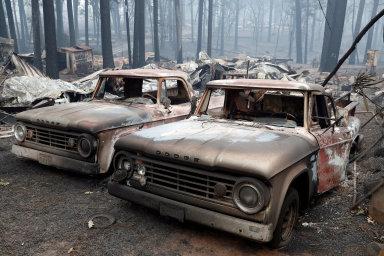 Nejtragičtější požár v historii Kalifornie má už 59 obětí, 130 lidí se stále pohřešuje. Příčiny neštěstí jsou neznámé