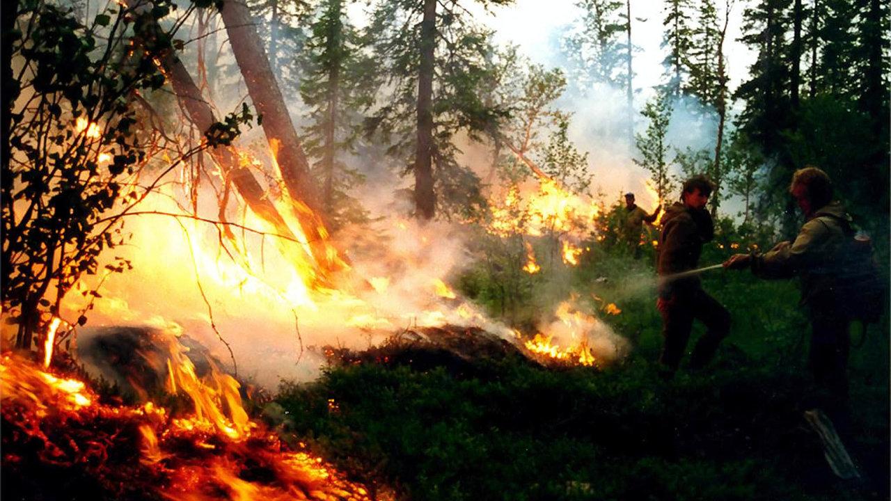 Rozsáhlé požáry ničí Sibiř už několik týdnů.