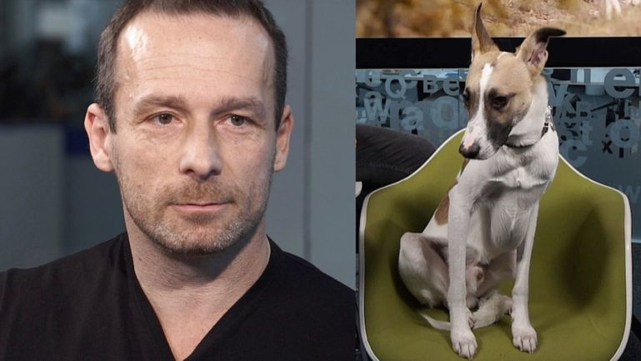 Rožek: Lidé si psy berou i jako alarm k domu, upozorňujeme na týrání, už točíme film.