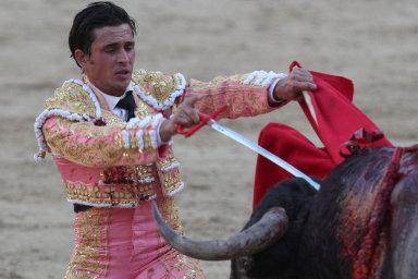 Zpátky do arény. Byznys kolem koridy se ve Španělsku v pandemii zastavil, nyní jsou býčí zápasy opět na scéně.