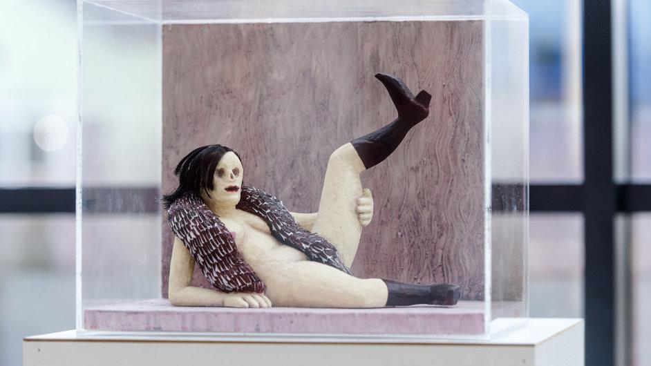 Snímek z výstavy Eriky Bornové a maleb Tomáše Císařovského