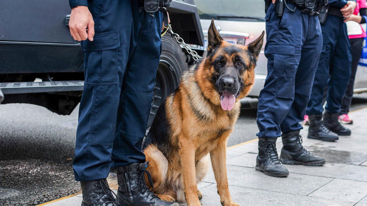 Metodu pachové identifikace sama policie uznala zanepříliš důvěryhodnou.