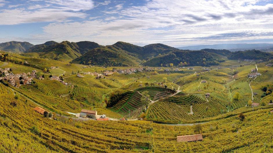 Vinice apelace Cartizze v Itálii