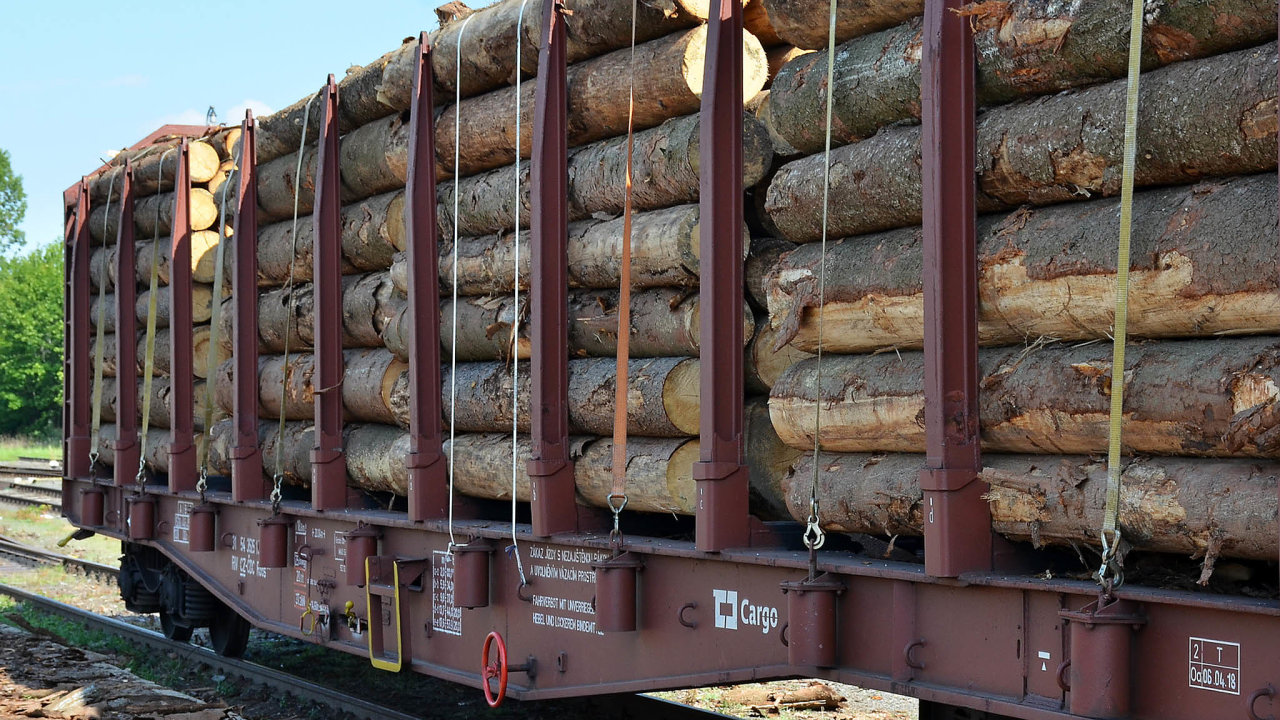 Podnik spravující téměř polovinu českých lesů vyždímal své účty skoro nanulu. Zároveň se loučí se zisky, jež odroku 2010 přesáhly vsoučtu 34 miliard korun. Na vině je hlavně kůrovec.