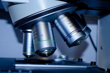 Výzkum léků