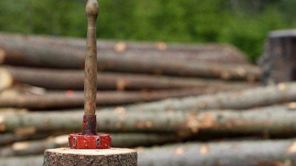Svozené dřevo v Krkonoších, Lesy ČR