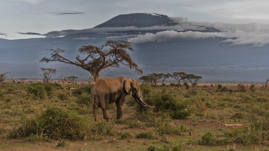 Nejvyšší bod masivu Kilimandžáro, Uhuru, je přes značnou výšku dosažitelný bez větších technických problémů.