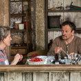 Nový film polské režisérky Hollandové se nepovedl. Není to ani thriller, ani komedie