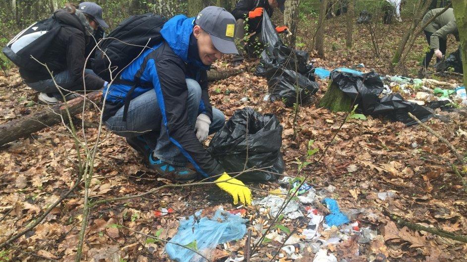 Zaměstnanci EY uklízejí les