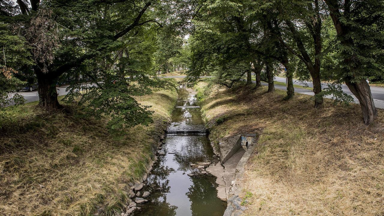 Lišanský potok je typický příklad napřímeného, upraveného toku vzemědělské krajině.