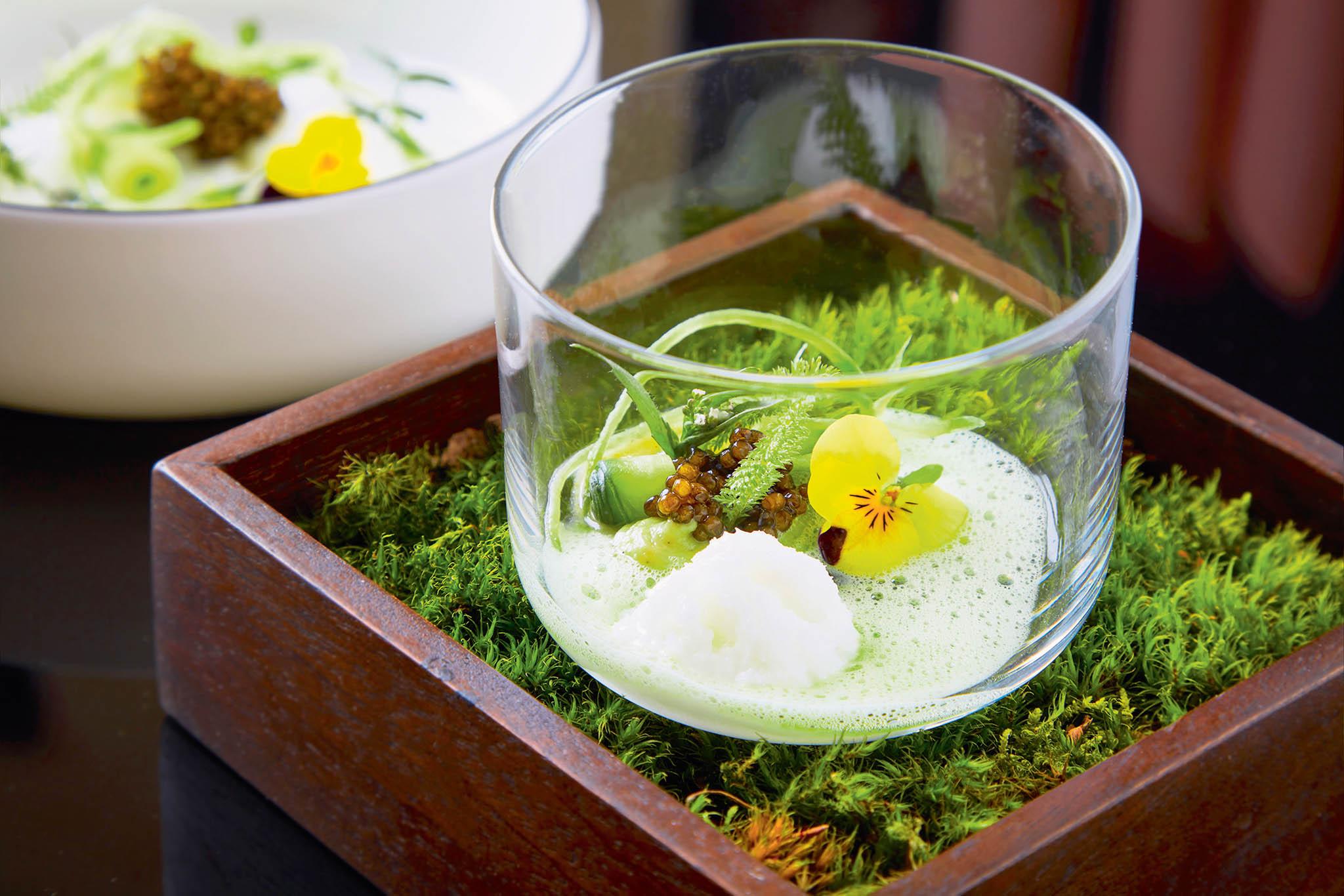Gin-tonic kefír, okurka, avokádo