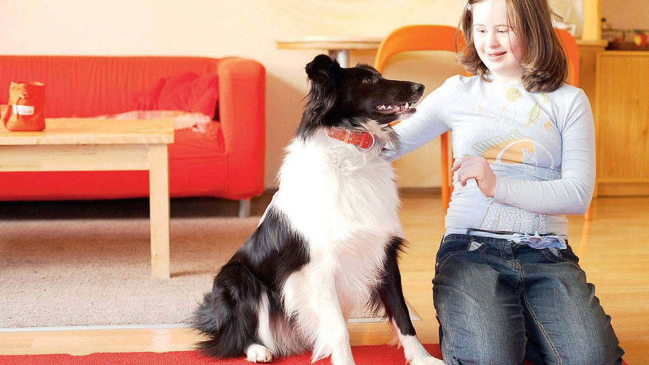 Terapeutickým psem semůže stát téměř jakékoli plemeno, které podstoupí výcvik. Hojně jsou využíváni zlatí retrívřičiborder kolie, patřící mezi vysoce inteligentní azároveň velmi poslušná plemena.