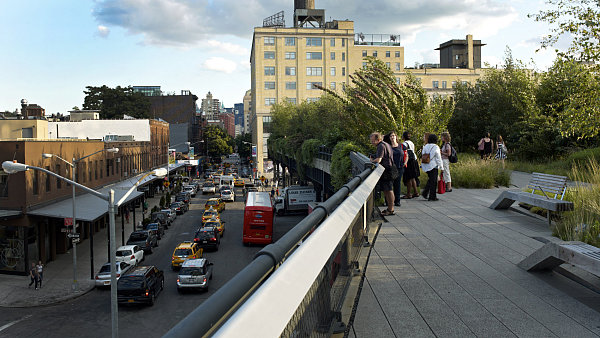 1a NY high line bloom
