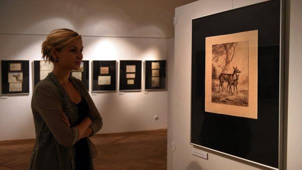 Snímek z výstavy Ernsta Gustava Doerella.