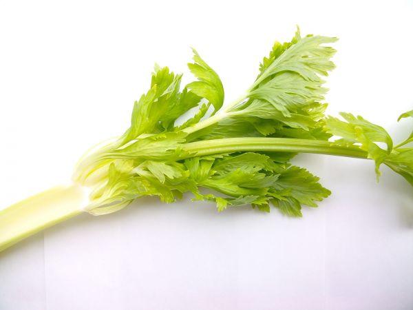 vegetables 2085017 1920