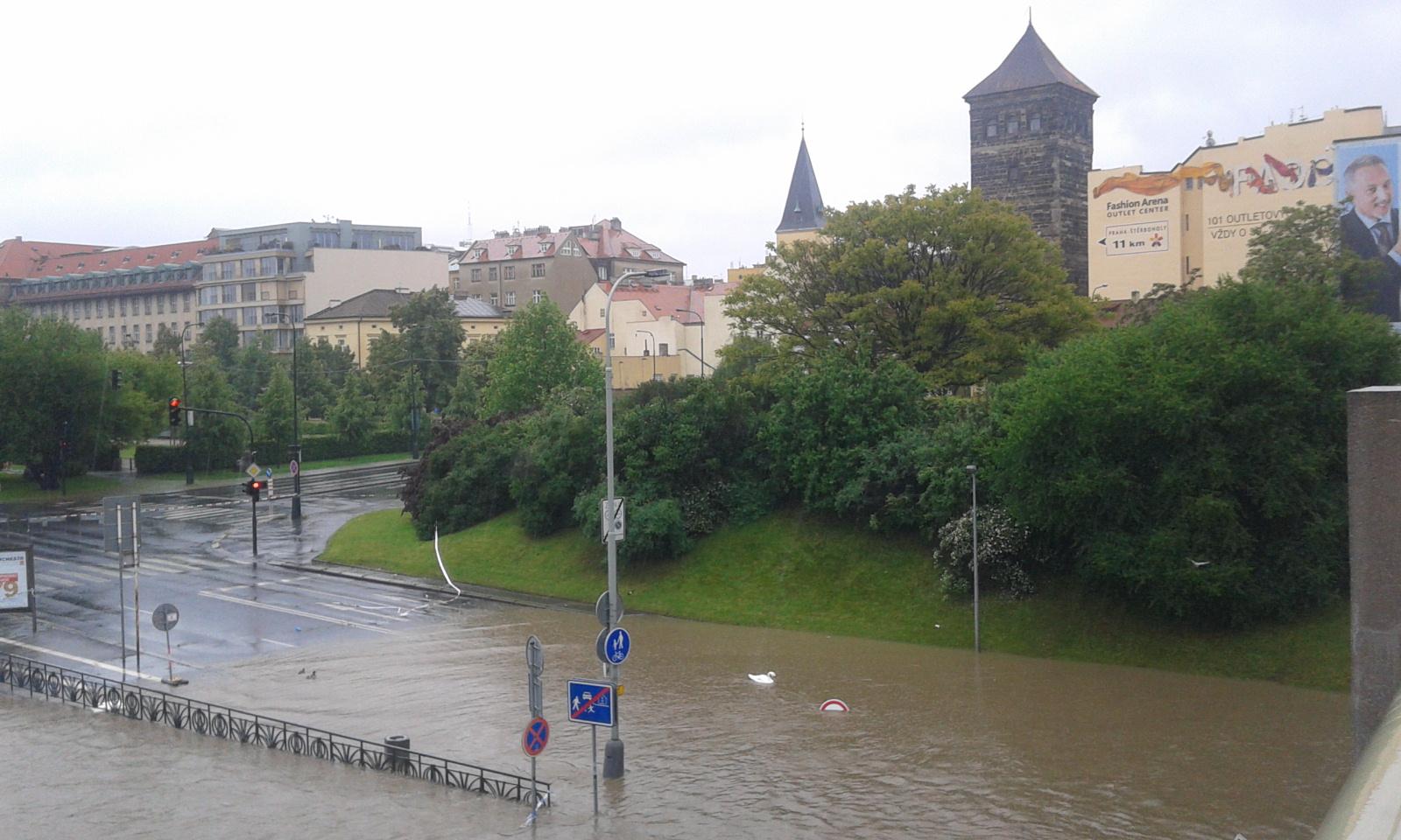 Zákaz vjezdu labutí u Štefánikova mostu v Praze