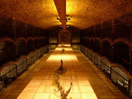 Archivní sklep v areálu bohutického zámku