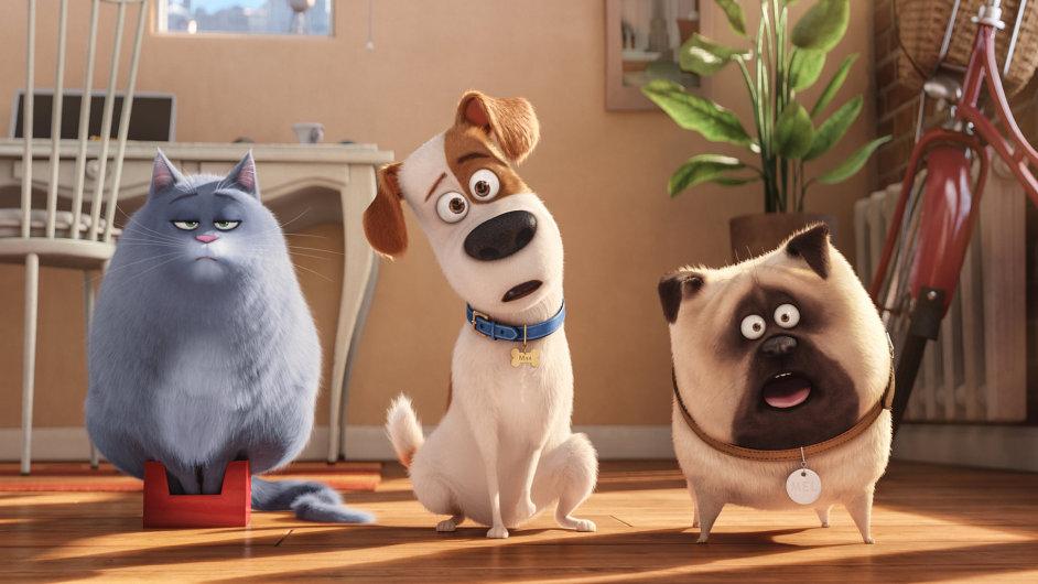 Film Tajný život mazlíčků tuzemská kina promítají pátým týdnem.