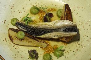 Podívejte se, jak v restauraci Mlýnec připravují makrelu s pistáciovým pyré, hruškou a tapiokou
