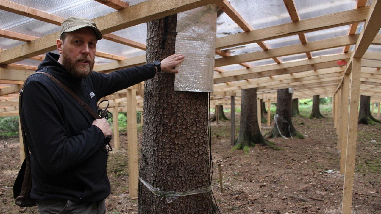 Vědci zkoumají, jak vyzrát na kůrovce. Entomolog Roman Modlinger u výzkumného projektu Extemit-K v lese nedaleko Kostelce nad Černými lesy.