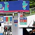 Maďarská společnost MOL provozuje v České republice síť čerpacích stanic Pap Oil - Ilustrační foto.