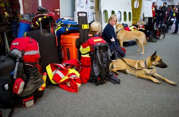 Němečtí záchranáři a jejich psi čekají na letišti ve Frankfurtu.