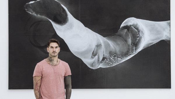 Snímek z výstavy Musy.