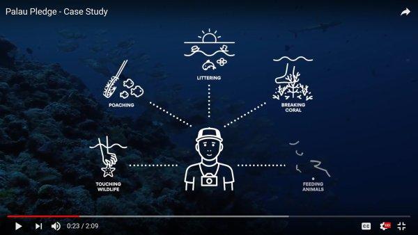 Projekt na záchranu ekosystému ostrovní Republiky Palau získal v Cannes Lions tři hlavní ceny.