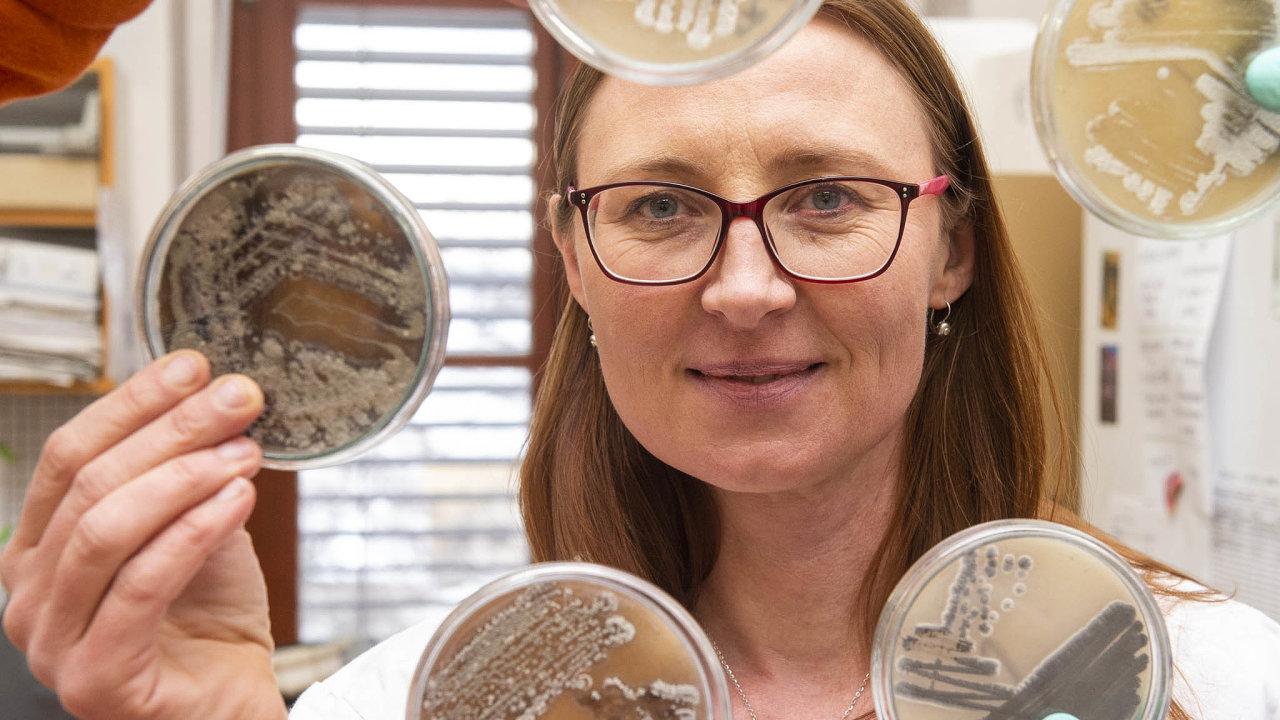 Takhle rostou vlaboratoři. Alica Chroňáková zčeskobudějovického Biologického centra Akademie věd ČR ukazuje, jak naPetriho miskách vlaboratoři rostou půdní mikroorganismy.