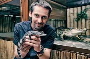 Za tajemným krokodýlem: Český badatel objevil v konžských bažinách zapomenutého tvora